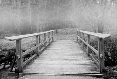 Mist Bridge Print