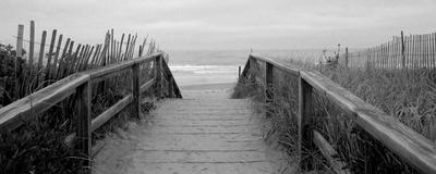 Bridge to Sea Posters