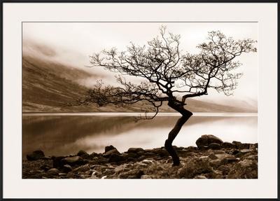 Loch Etive Print by Danita Delimont