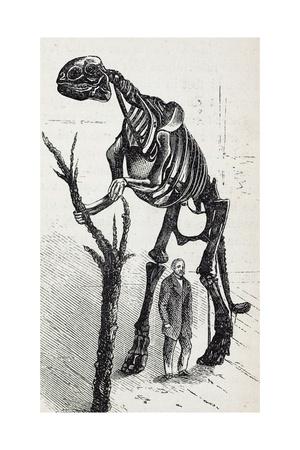 1868 Waterhouse Hawkins & Hadrosaur Giclee Print by Stewart Stewart