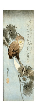 The Crescent Moon and Owl Perched on Pine Branches Giclee Print by Ando Hiroshige