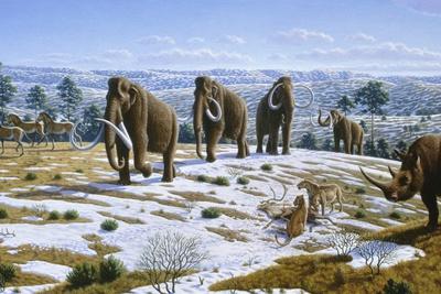 Mammals of the Pleistocene Era Photographic Print by Mauricio Anton