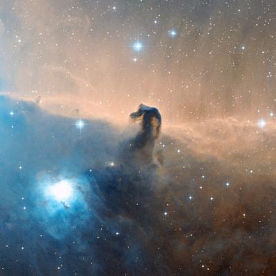 Horsehead Nebula Premium Photographic Print by Davide De Martin