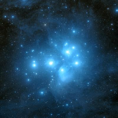 Pleiades Star Cluster Premium Photographic Print by Davide De Martin