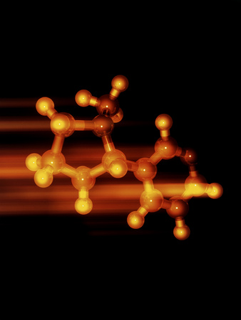 Nicotine Molecule Photographic Print by Laguna Design