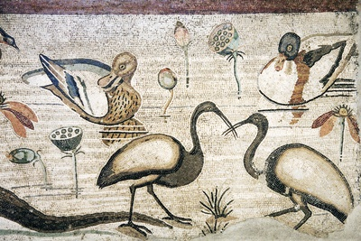 Nile Flora And Fauna, Roman Mosaic Photographic Print by Sheila Terry