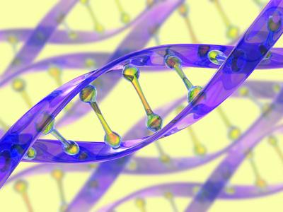 DNA Molecule Photographic Print by David Mack
