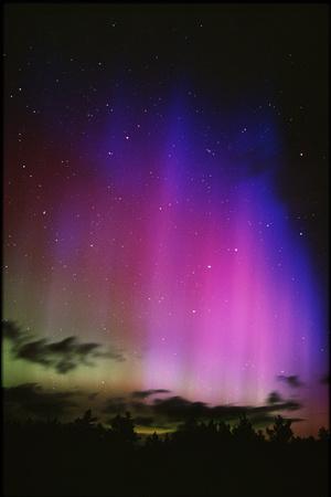 Aurora Borealis, Finland Photographic Print by Pekka Parviainen