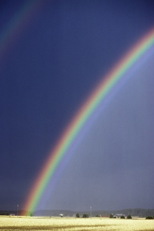 Rainbow Over a Field Photographic Print by Pekka Parviainen
