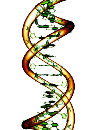 DNA Molecule, Conceptual Artwork Photographic Print by  PASIEKA