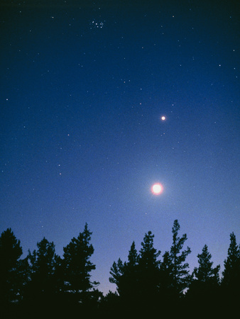 Earth View of the Planet Venus with the Moon Premium Photographic Print by Pekka Parviainen