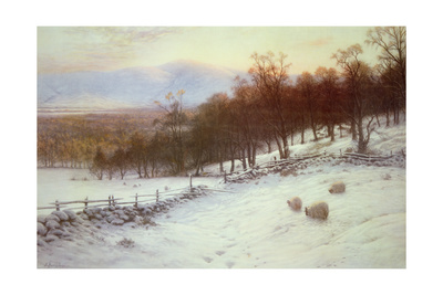 Snow Covered Fields with Sheep Giclee Print by Joseph Farquharson