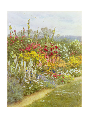 A Herbaceous Border Giclee Print by Helen Allingham