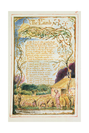 The Lamb: Plate 8 from 'Songs of Innocence and of Experience' C.1815-26 Giclee Print by William Blake