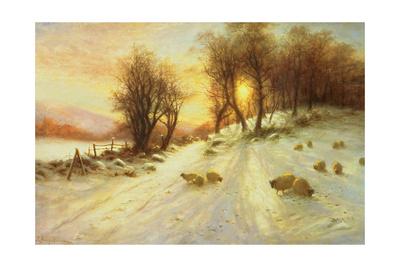 Sheep in Winter Snow Giclee Print by Joseph Farquharson