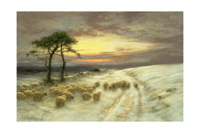 Sheep in the Snow Giclee Print by Joseph Farquharson