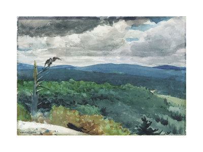 Hilly Landscape, 1894 Giclee Print by Winslow Homer