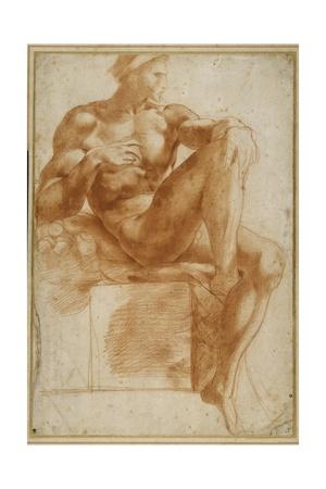 Ignundo on the Sistine Valut Giclee Print by Giovanni Battista Rosso Fiorentino
