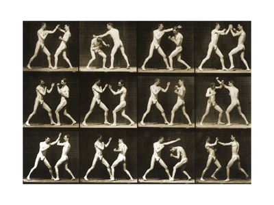 Two Men Boxing, from the 'Animal Locomotion; Series, C.1881 Photographic Print by Eadweard Muybridge