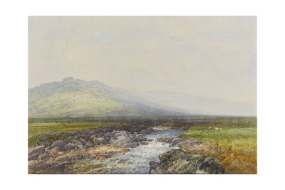 Valley of the Rocks on the West Okement , C.1895-96 Giclee Print by Frederick John Widgery