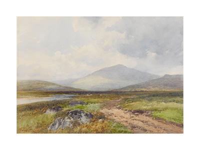 Scene on the Taw, Stepperton , C.1895-96 Giclee Print by Frederick John Widgery
