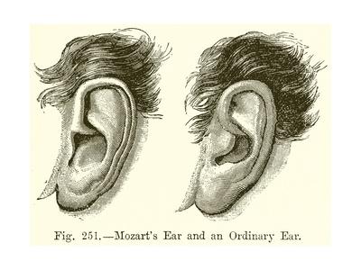 Mozart's Ear and an Ordinary Ear Giclee Print