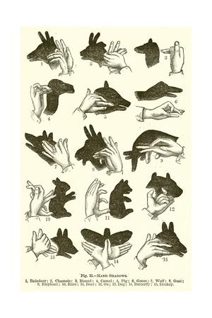 Hand Shadows Gicléetryck