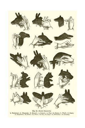 Hand Shadows Giclee Print