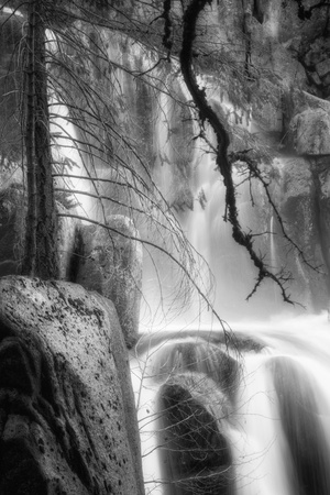 Deep In the Cascades, Yosemite Photographic Print by Vincent James