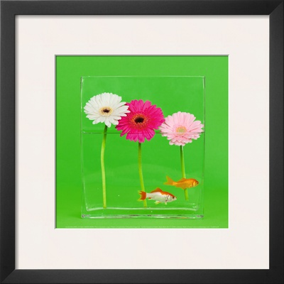 Flowers and Gold Fishes II Print by Camille Soulayrol