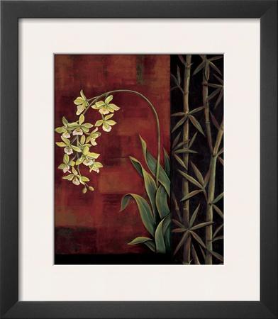 Green Orchid Print by Jill Deveraux