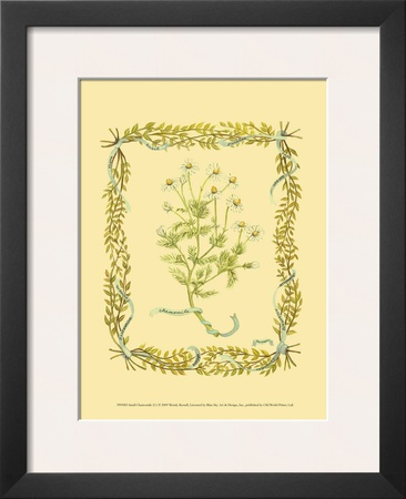 Chamomile Prints by Wendy Russell