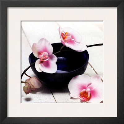 Orchid in a Bowl Print by Stephane De Bourgies