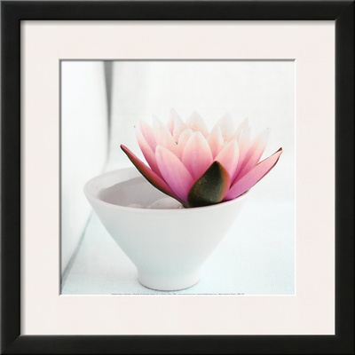 Waterlily Print by Amelie Vuillon