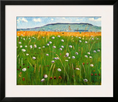 Meadow, c.1902 Posters by Ferdinand Hodler