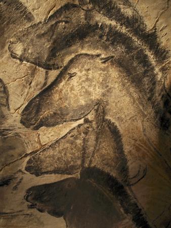 Stone-age Cave Paintings, Chauvet, France Premium Photographic Print by Javier Trueba