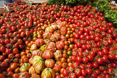 Tomato Stall Photographic Print by Jeremy Walker
