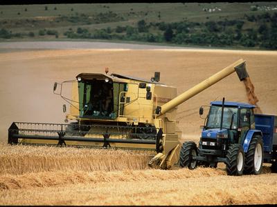 Combine Harvester Off-loading Grain Premium Photographic Print by Jeremy Walker