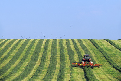 Tractor Turning Grass for Silage Photographic Print by Jeremy Walker