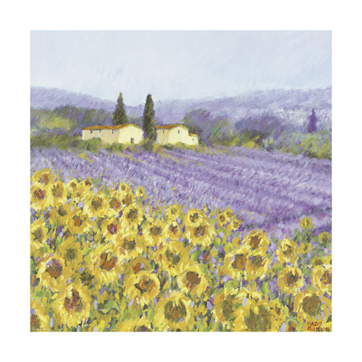Lavender and Sunflowers, Provence Poster di Hazel Barker