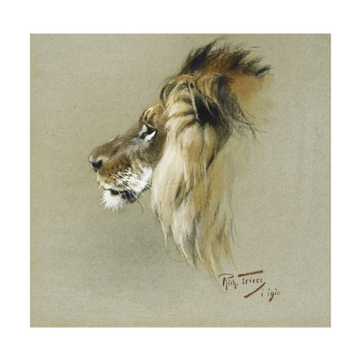 A Lion's Head Giclee Print by Richard Friese