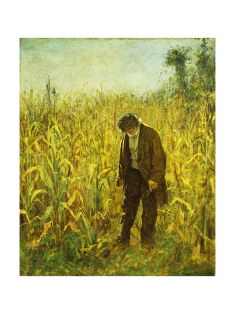 Man in a Cornfield Premium Giclee Print by Johnson Eastman
