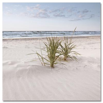 Soft Velvet Beach Print