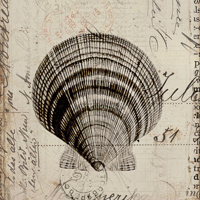 Ocean Collection IV Prints by Sabine Berg