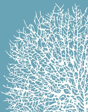 Aqua Coral I Prints by Sabine Berg