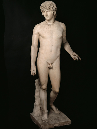 Antinous Farnese, 2nd Century, Marble, All Rounded Photographic Print by Unknown Artist