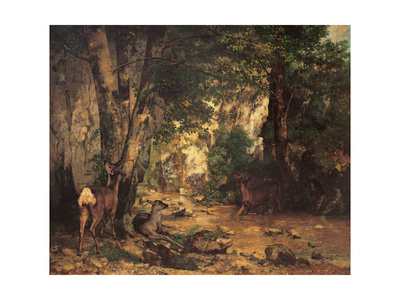 Thicket of Roe Deer at the Stream of Plaisir Fontaine Posters by Gustave Courbet