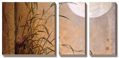 Lakeside Moonrise Prints by Don Li-Leger