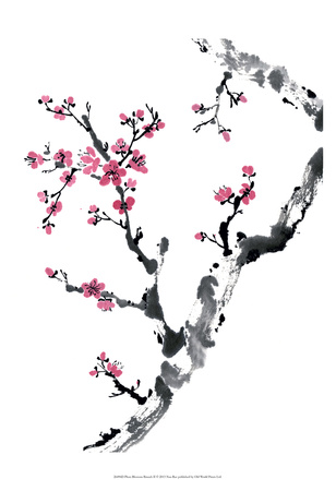 Plum Blossom Branch II Prints by Nan Rae