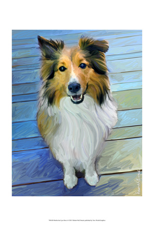 Sheltie the Eyes Have it Posters by Robert Mcclintock